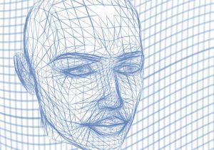 head wireframe